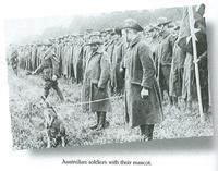 Somme_battlefields