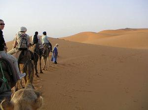Sahara04