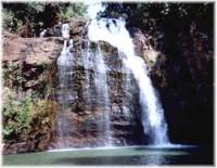 Tanaugou